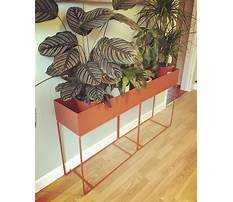 Diy window flower boxes.aspx Plan