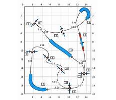 Dog agility training dfw Plan