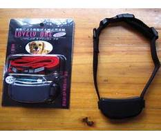 Dog barking deterrents that work Plan