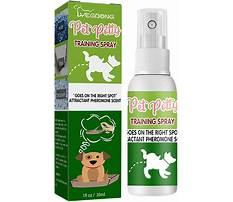 Dog potty training spray india.aspx Plan