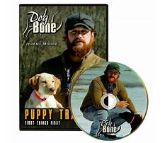 Dog train dvd Plan