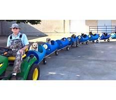 Dog train eugene bostick Plan