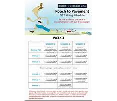 Dog traincom Plan