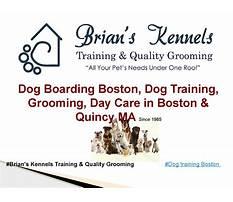Dog training boston area.aspx Plan