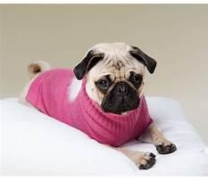 Dog training brainerd mn.aspx Plan
