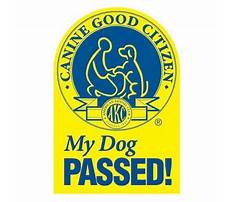 Dog training cgc test Plan