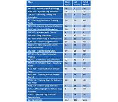 Dog training classes prices Plan