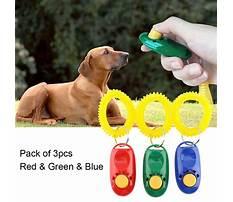 Dog training clicker method Plan