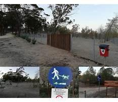 Dog training cyprus nicosia Plan