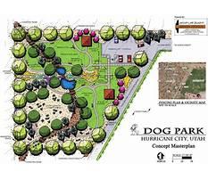 Dog training echo park Plan