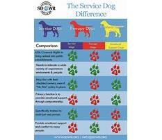 Dog training emotional support Plan