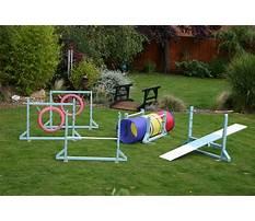 Dog training equipment australia Plan