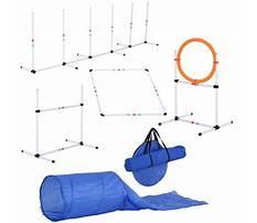 Dog training equipment wholesale Plan
