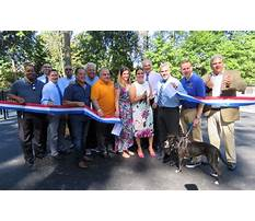 Dog training essex county Plan