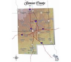 Dog training in genesee county mi.aspx Plan