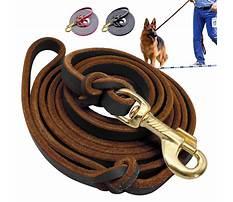 Dog training leashes leather.aspx Plan