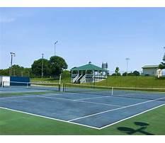 Dog training maysville ga elementary Plan