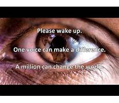 Dog training washington dc area.aspx Plan