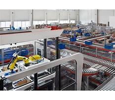 Dogs for adoption that are house trained and are young.aspx Plan