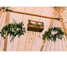 Dollar store wedding decor friggin gorg Plan