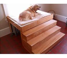 Elevated dog bed plans Plan