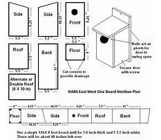 Free birdhouse blueprints wild birds Plan