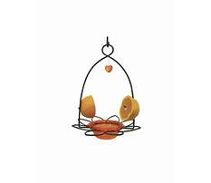Fruit bird feeder program Plan