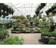 Garden centres local Plan