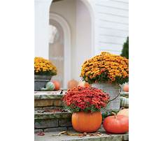 Garden ideas for fall Plan