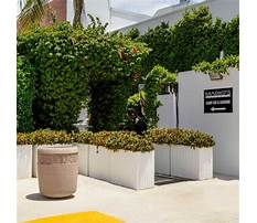 Garden pots and planters sydney Plan