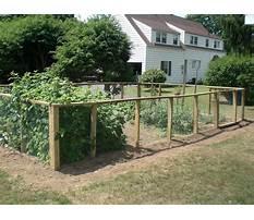 Gardens within garden fencing ideas pictures Plan