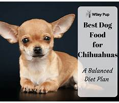 Habitat and diet of a chihuahuas Plan