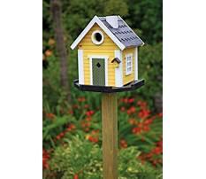 Homemade bird house for sale Plan