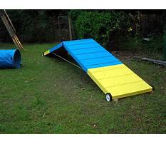 How to agility train your dog Plan