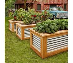 How to build a raised bed garden box cheap Plan