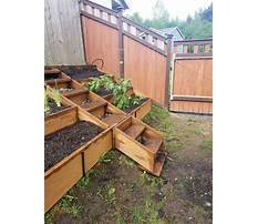 How to build a raised bed garden on a hill Plan