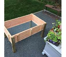 How to build a raised bed garden on a stand Plan