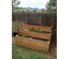 How to build a raised bed garden step by step Plan