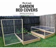 How to build a raised bed garden with cover Plan