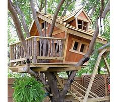 How to build a treehouse for adults Plan