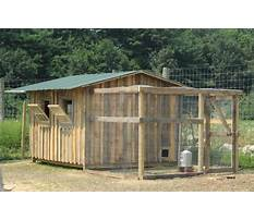 How to build chicken houses and runs Plan