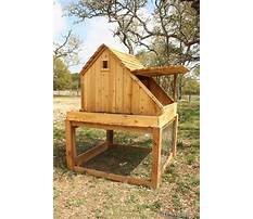How to make a little chicken house Plan