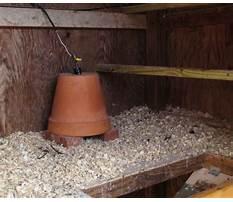 How to make chicken coop warmer Plan