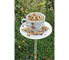 How to make tea cup bird feeders on poles Plan