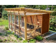 How to make your chicken coop better Plan