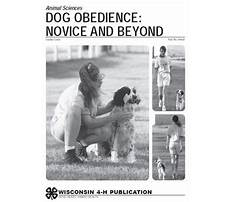 How to potty train older dogs.aspx Plan