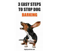 How to stop a barking dog Plan