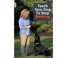 How to stop dogs from barking at people Plan