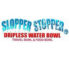 How to train dogs not to chew.aspx Plan