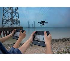 How to train your labrador puppy in hindi.aspx Plan